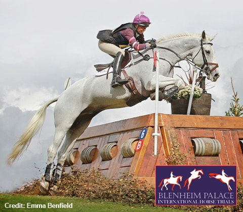 Blenheim Horse trials sweepstakes