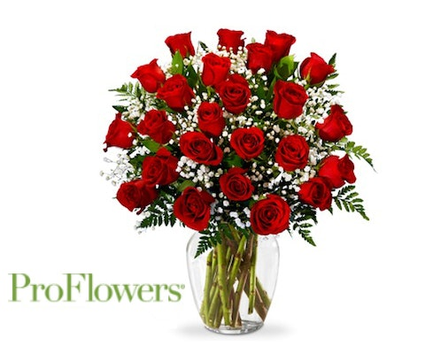 Two Dozen Roses from ProFlowers sweepstakes
