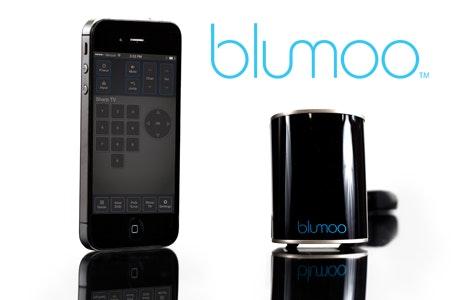Blumoo small