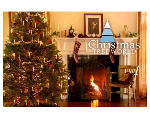 Win Christmas goodies with Christmas Tree World sweepstakes