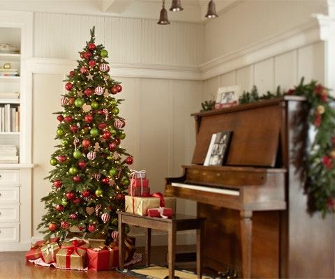 Win a classic fraser fir