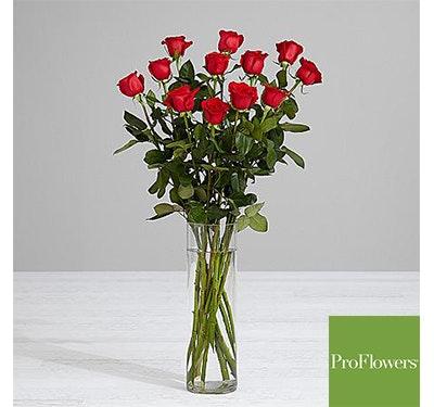 Beauty roses sm