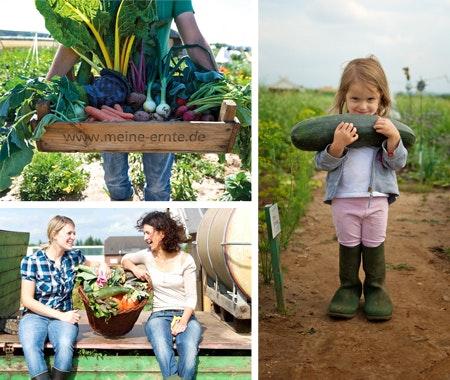 Gewinnen Sie einen Gemüsegarten! Gewinnspiel