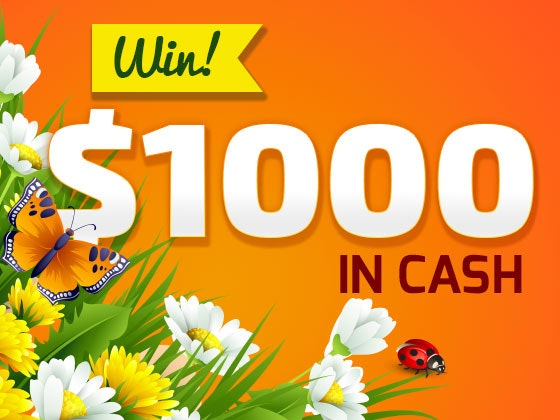 $1000 Cash Prize - April 2016 sweepstakes