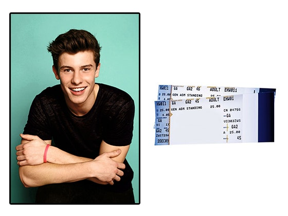 Shawn Mendes Concert tickets sweepstakes