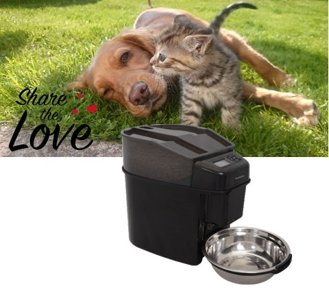 PetSafe Pet Feeder sweepstakes