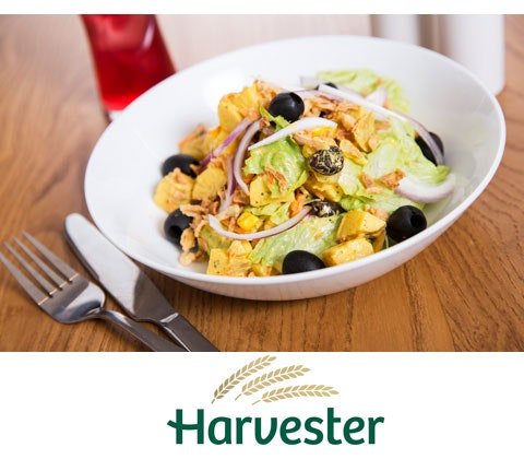 Win 2 x £250 Harvester gift cards sweepstakes