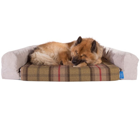 Silentnight luxury dog bed sweepstakes