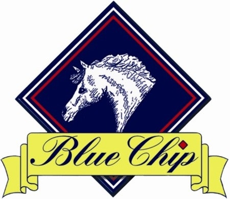 Blue Chip sweepstakes