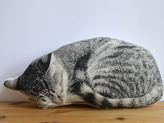 Catpillow animaltales giveaway