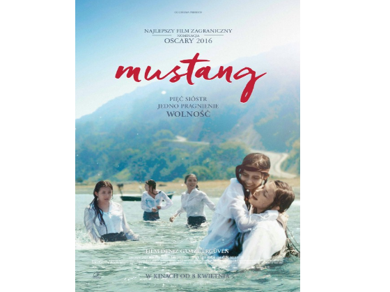 DVD Mustang sweepstakes