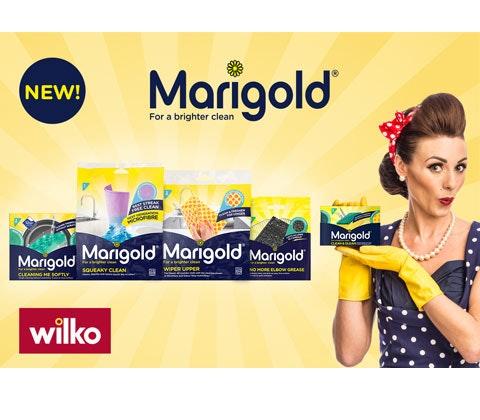 Wilko marigold competition