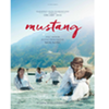 Mustang DVD sweepstakes