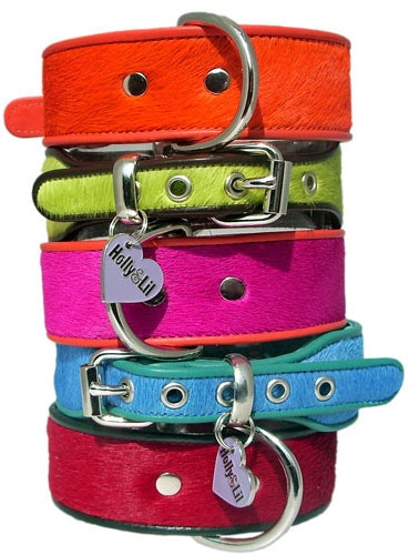PET ACCESSORIES  sweepstakes